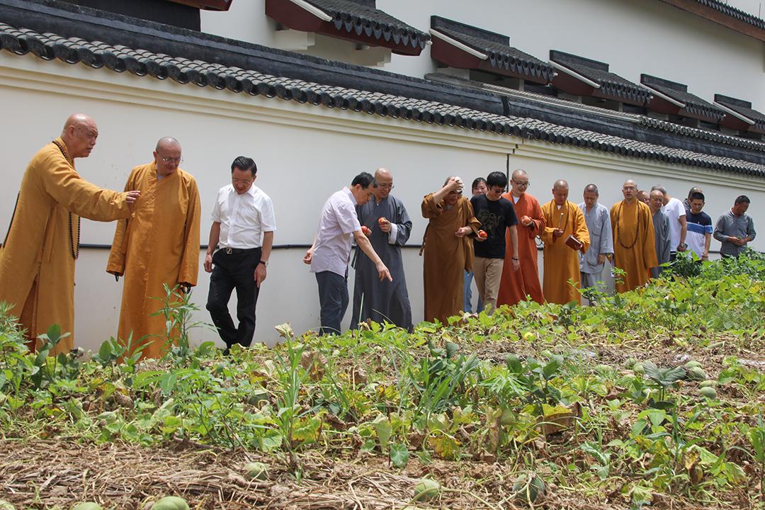 中国佛教协会副秘书长宏度法师一行参观普陀山普济农庄